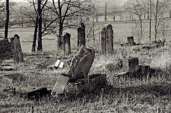 Cmentarz żydowski w Byczynie w obiektywie Rafała Stasiaka