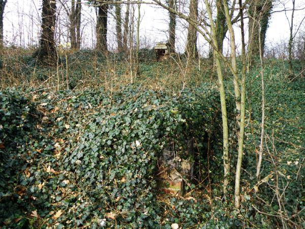 Cmentarz żydowski w Grabowie nad Prosną