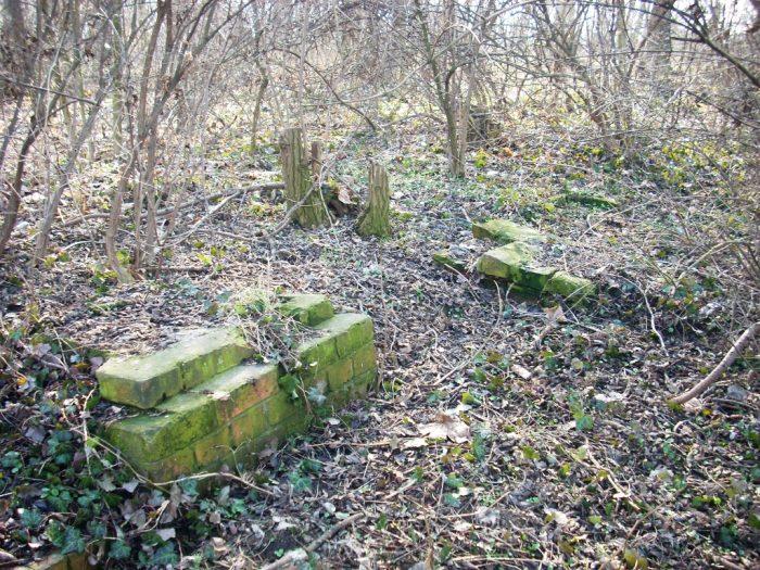 Cmentarz żydowski w Raciborzu Jewish cemetery in Raciborz