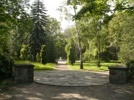 Cmentarz żydowski w Rybniku - stan obecny